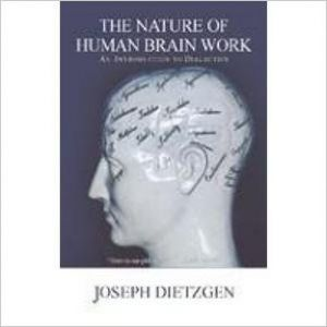 The Nature Of Human Brain Work